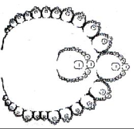 HumanFractals1