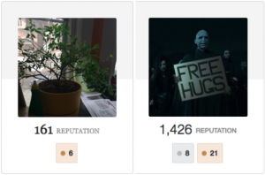 Stack Exchange Profiles: my plant Dave, and Voldemort.