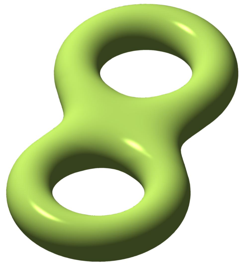 Genus Two Curve - Oleg Alexandrov